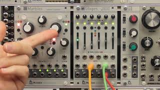 Mutable Instruments Stages : les bases
