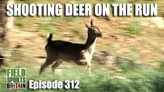 Fieldsports Britain - Shooting Deer on the Run