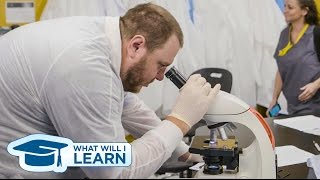 What Will I Learn: Medical Laboratory Technician