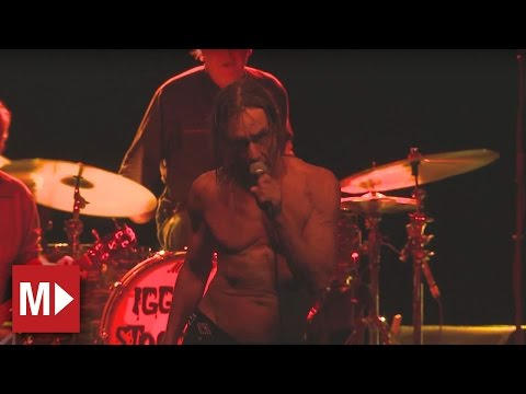 Iggy and the Stooges | Search And Destroy | Live in Sydney