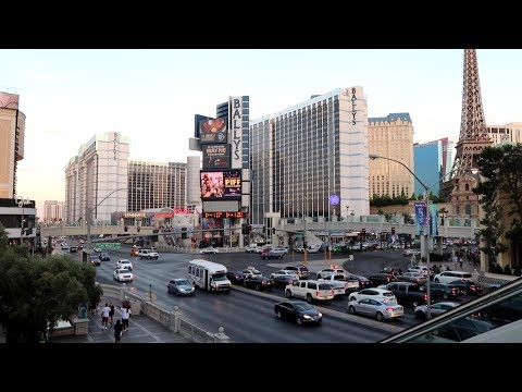 Never Seen It All  Las Vegas