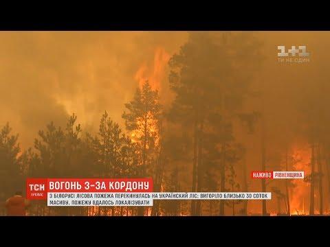 Масштабна пожежа з