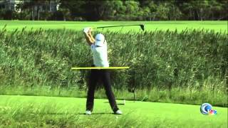 Rory Mcilroy rips it 350 yards! (slow motion pro analysis afterwards)