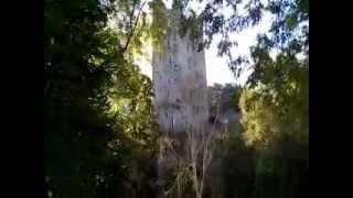 Ireland Road Trip-Blarney Castle 1