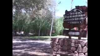 Video: Programa Sin Libreto