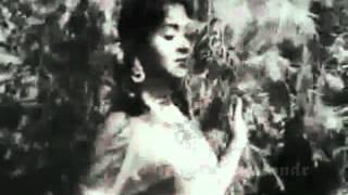 teri pyari pyari surat..chasm-e-baddur..SarojaDevi - Rafi -.Sasural1961.atribute