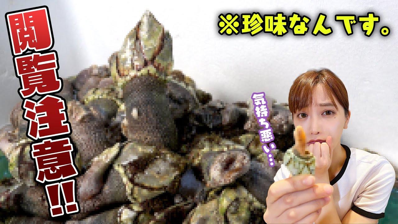 【閲覧注意】チャンネル史上NO1のグロテスク食材に魚屋一家騒動が起きました😫💦