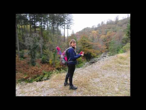 Walking the Coed y Brenin Gold Mine trail October 30, 2016