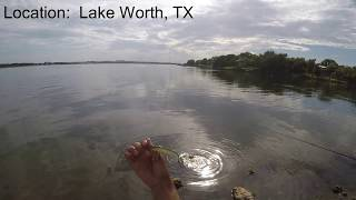 Bass fishing at Lake Worth