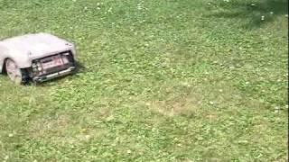 TONDEUSE ROBOT LIZARD M480
