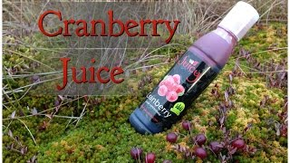 Pure Cranberry juice Concentrate  #juicydrinkcom