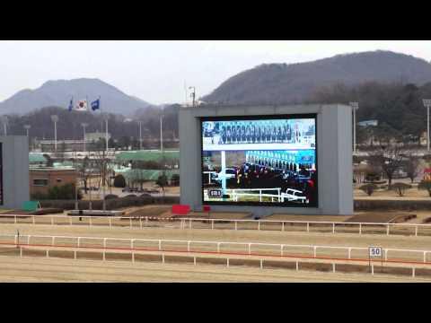 Seoul Racecourse Park - Horse Race in Seoul