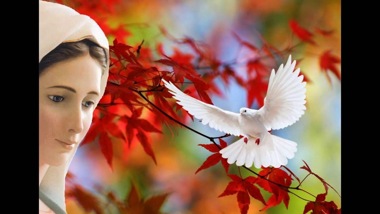 Bien-aimé Sainte vierge marie - Medjugorje - Gospa - YouTube JU68