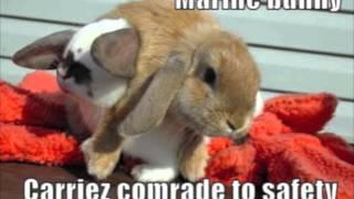 Mega Smegma - Bad Bunny