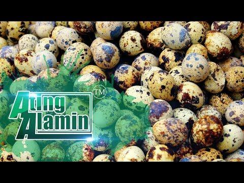 Ating Alamin July 23, 2017