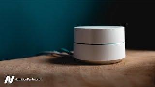 Má Wi-Fi záření vliv na funkci mozku?