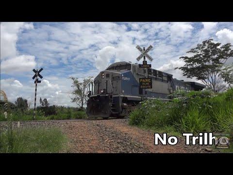 No trilho - Trem passando no km 369 sentido mato grosso