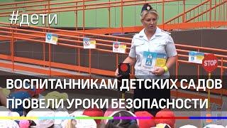 Воспитанникам детских садов Подмосковья провели уроки безопасности