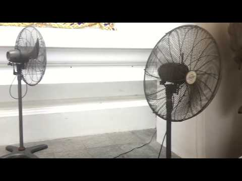 Wing Ton brand and Hatari brand industrial/commercial duty pedestal fans at a temple