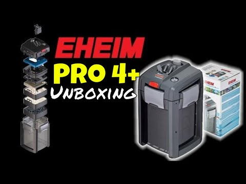 Eheim Pro 4+ 🐟 Unboxing Professionel 4+ 350 Canister Filter Install