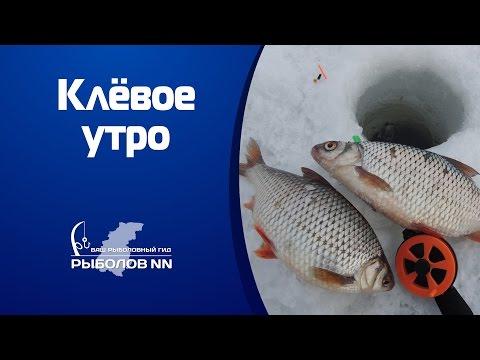 рыбалка горьковское водохранилище судак