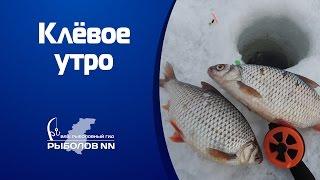 Рыбалка в конце марта Горьковское водохранилище Ловля плотвы и окуня