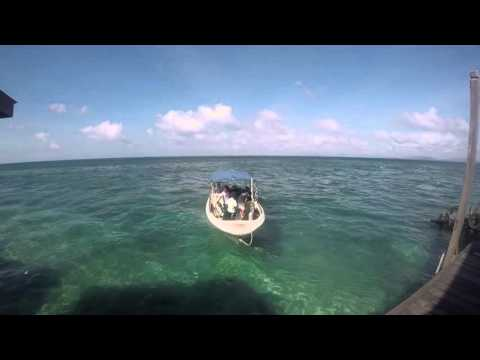 Travel 26: Borneo (2015/2016)