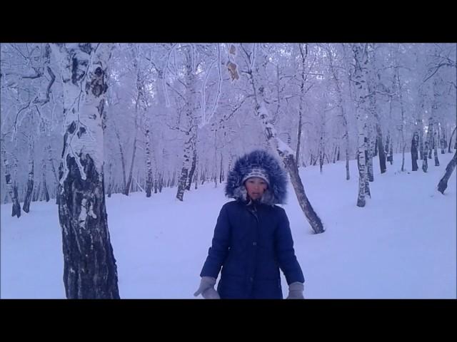 Изображение предпросмотра прочтения – АнастасияБатудаева читает отрывок изпроизведения «Мороз, Красный нос» Н.А.Некрасова