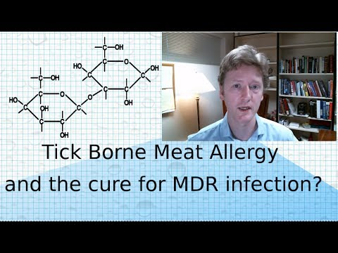 Alpha-Gal Red Meat Allergy and Aptamer Therapeutics