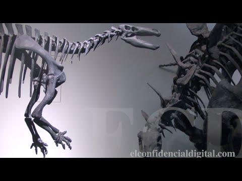 """Estos son los dinosaurios del """"Jurassic World"""" de Madrid"""