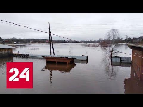 Такого не было 20 лет: в Костромской области борются с сильнейшим паводком - Россия 24