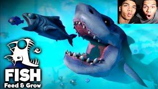 FISCH SIMULATOR !!! | PrankBrosGames