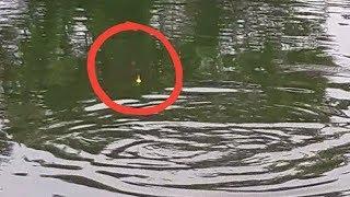 Mancing Ikan Bandeng Strike Ganas   Fishing Vlog #01