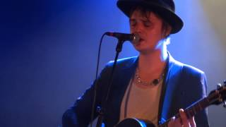 peter doherty - down for the outing (live)