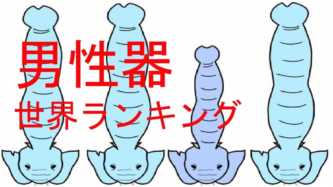 男性器 (だんせいき) - Japanese-English Dictionary - JapaneseClass.jp