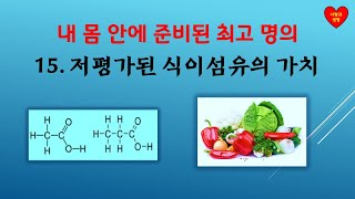 [내 몸 안에 준비된 의사]  15. 저평가된 식이섬유…