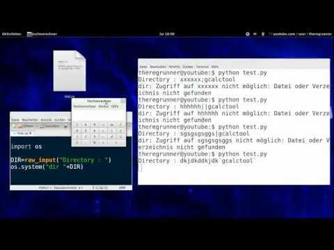 python ; Linux & She|| injection `Demo`