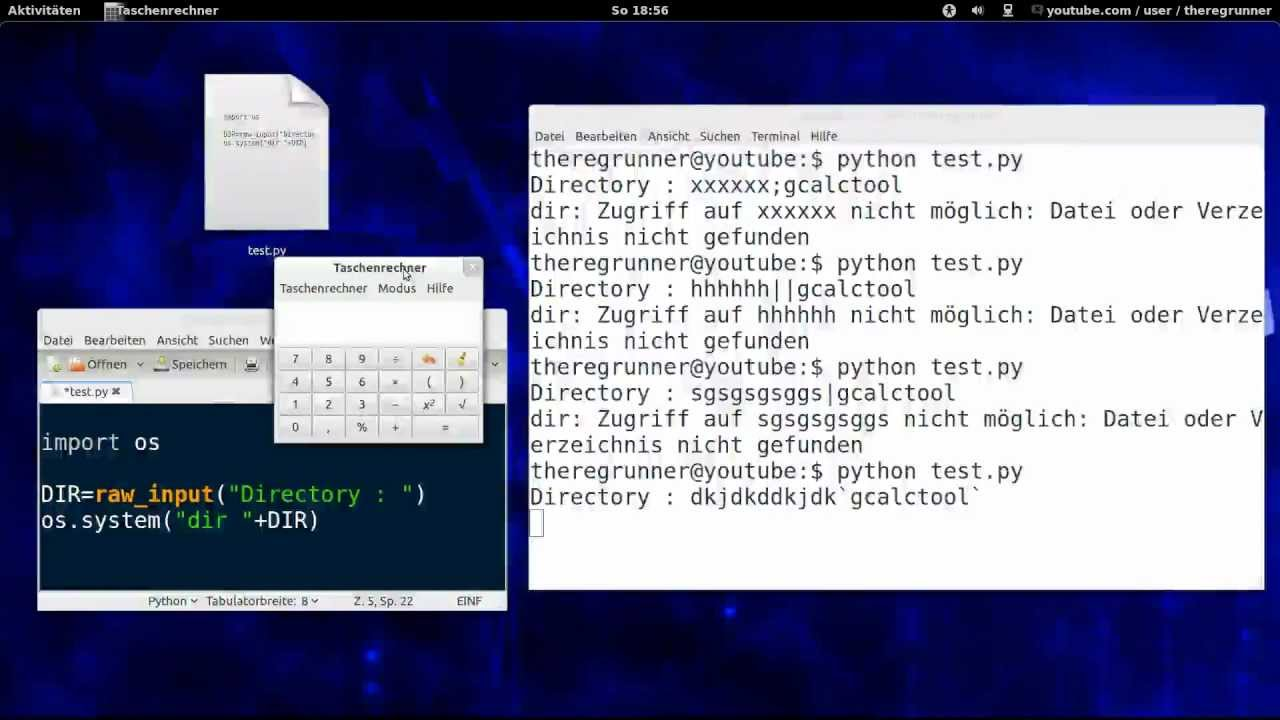 Python Linux She Injection Demo