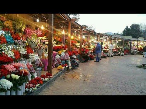 Flowers Market of Islamabad | Islamabad the Heaven in Pakistan |