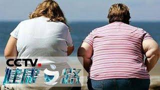 《健康之路》 20190920 减肥有术| CCTV科教