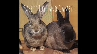 Rabbit Enrichment! Diy Toys, Games, And Puzzles For Your Bunny