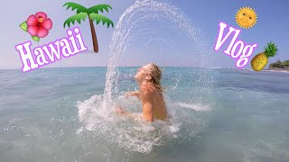 Swimming With DOLPHINS!!! In Hawaii | Ansley O'Connor