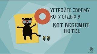 Гостиница для кошек в Москве Kot Begemot Hotel