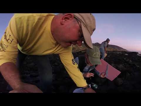 Rancho Marino Rocky Intertidal at Sunset