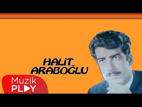 Halit Araboğlu - Sensiz Geceler