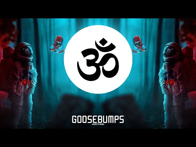 Travis Scott - Goosebumps (VANDETA Remix)