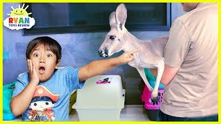Meet Ryan's New Pet Kangaroo!!!!