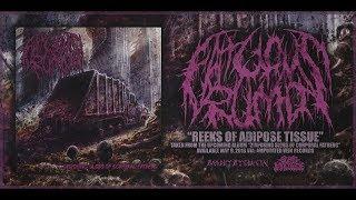 FATUOUS RUMP - REEKS OF ADIPOSE TISSUE [SINGLE] (2018) SW EXCLUSIVE