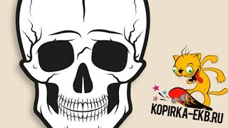 Как нарисовать череп в Adobe Illustrator | Видеоуроки kopirka-ekb.ru