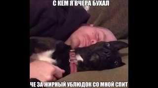 Физрук 2 сезон 10 серия!!!